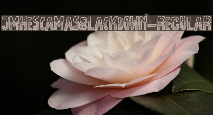 JMHEscamasBlackDown-Regular फ़ॉन्ट examples