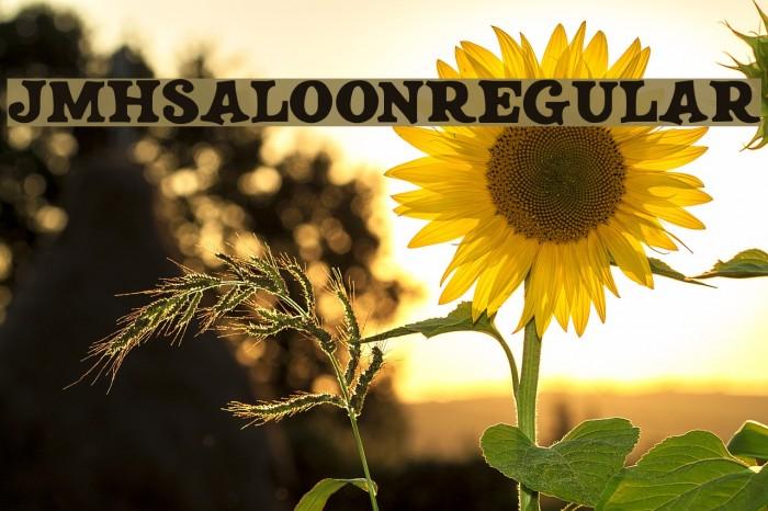 JMHSALOON-Regular फ़ॉन्ट examples