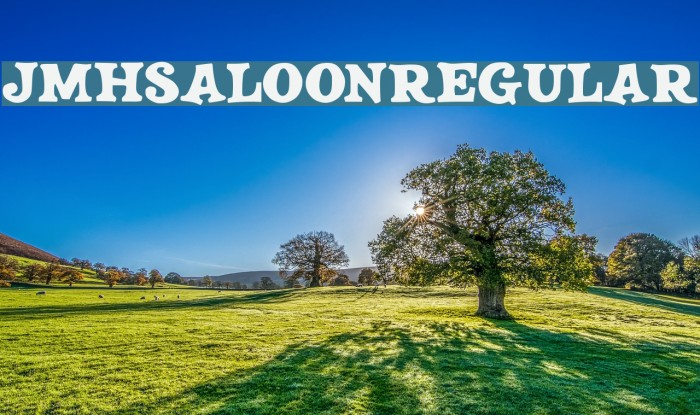 JMHSALOON-Regular Fonte examples