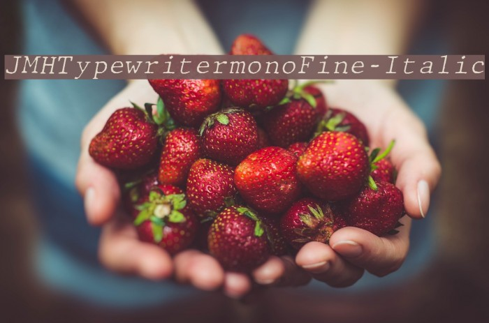 JMHTypewritermonoFine-Italic फ़ॉन्ट examples