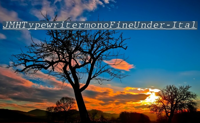 JMHTypewritermonoFineUnder-Ital फ़ॉन्ट examples
