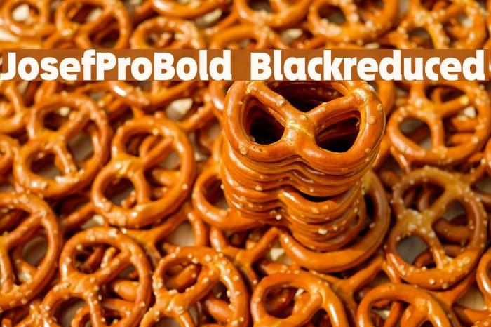 JosefProBold-Blackreduced Font examples