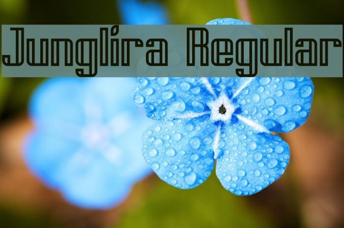 Junglira Regular Polices examples