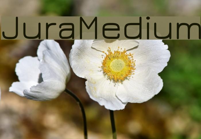 JuraMedium Fonte examples