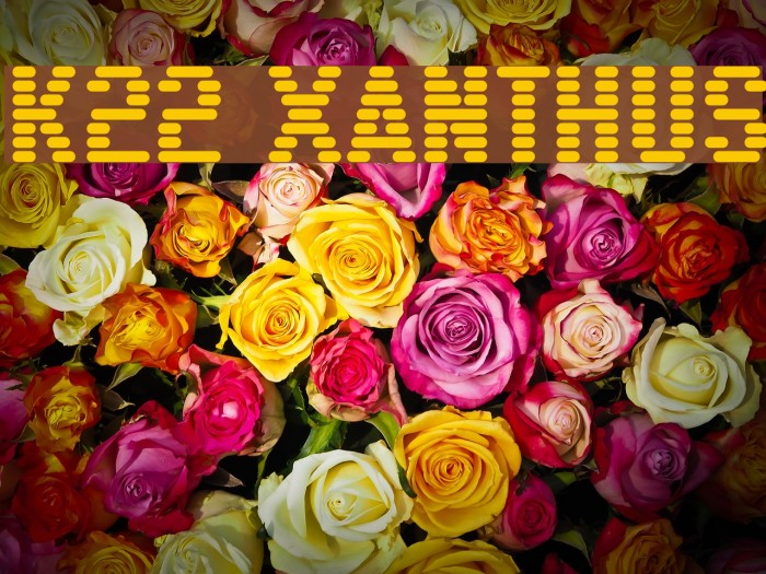 K22 Xanthus Font examples