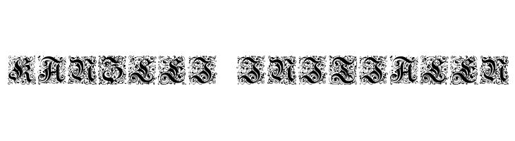 Kanzlei-Initialen  Free Fonts Download