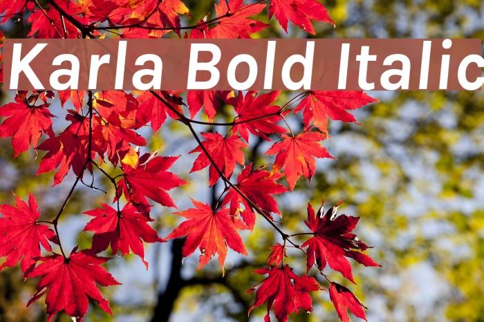 Karla Bold Italic Font examples