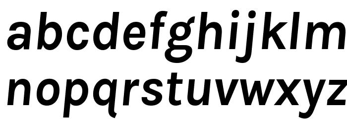 Karla Bold Italic Font Litere mici