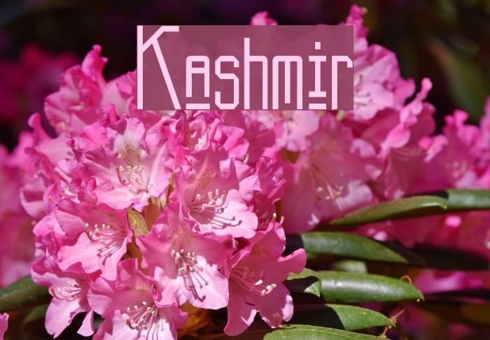 Kashmir Font examples