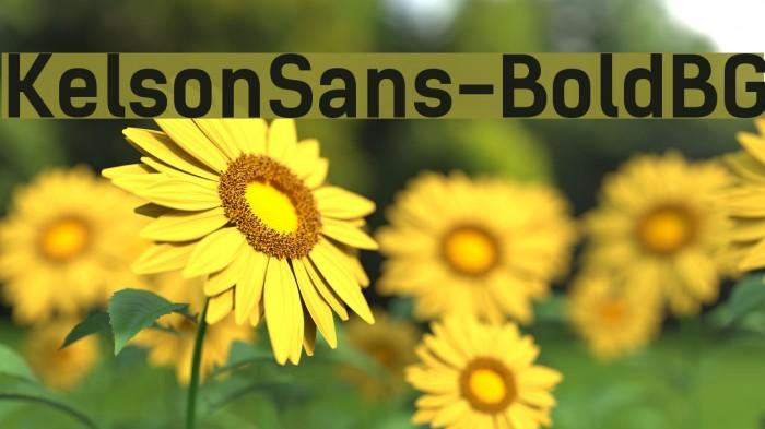 KelsonSans-BoldBG फ़ॉन्ट examples