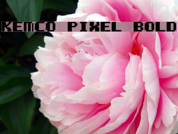 Kemco Pixel Bold फ़ॉन्ट examples