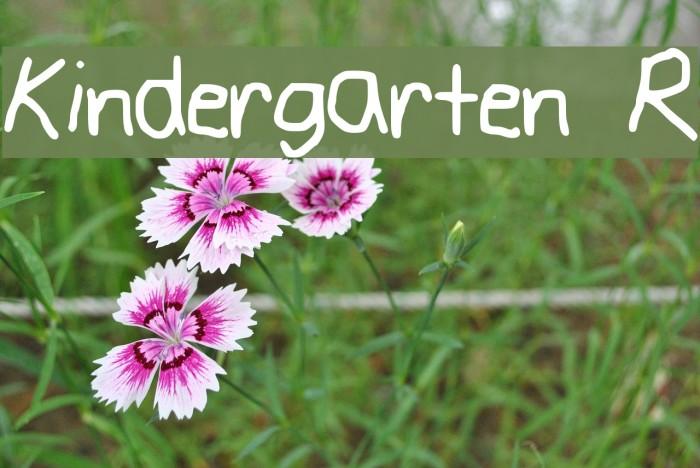 Kindergarten R Fonte examples