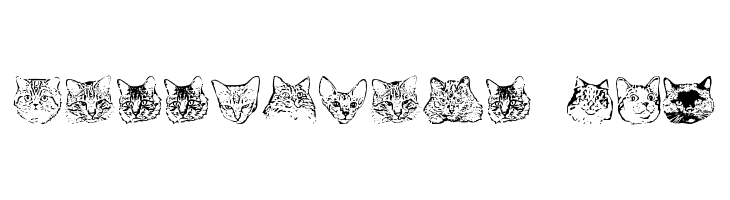 KittyPrint AOE  Free Fonts Download