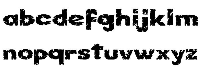 Kornik Font Litere mici