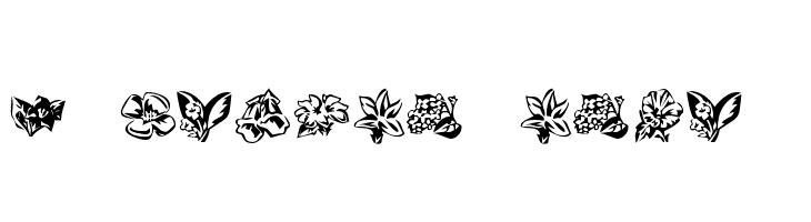 KR Beautiful Flowers 3  Fuentes Gratis Descargar
