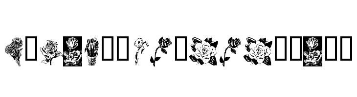 KR Beautiful Flowers  Fuentes Gratis Descargar