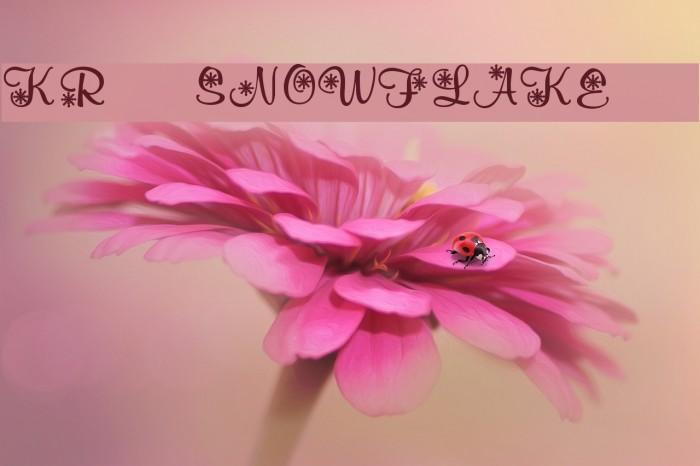 KR Snowflake 2 फ़ॉन्ट examples