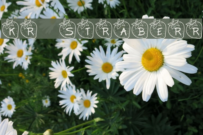 KR Strawberry फ़ॉन्ट examples