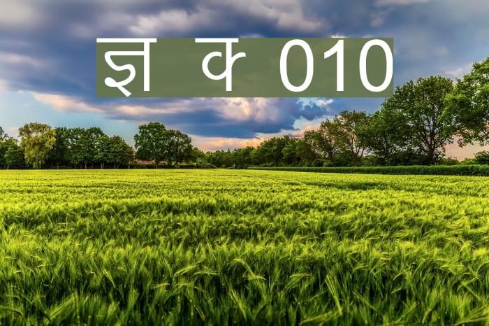 Kruti Dev 010 Font examples
