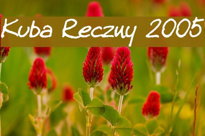 Kuba Reczny 2005 Fonte examples