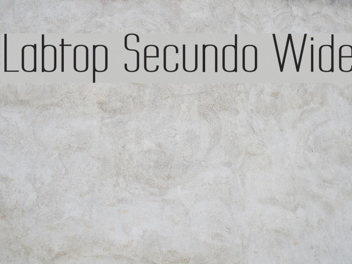 Labtop Secundo Wide Шрифта examples