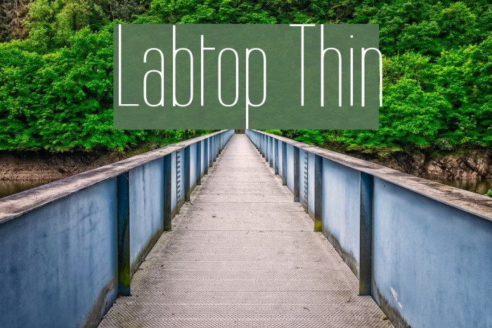 Labtop Thin Шрифта examples