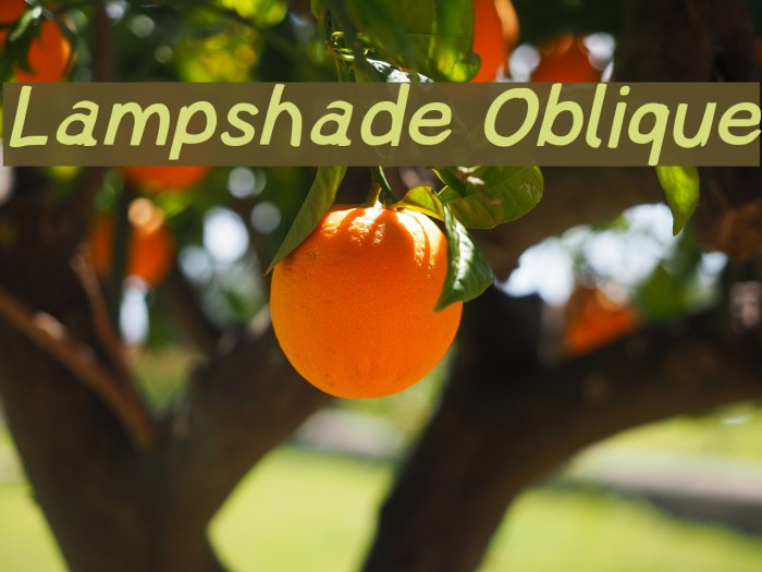 Lampshade Oblique Polices examples