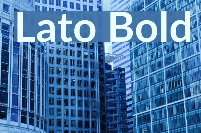 Lato Bold Font examples