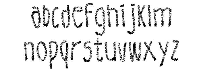 Leather Font Regular Fuentes MINÚSCULAS