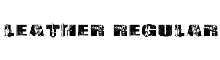 Leather Regular  Free Fonts Download