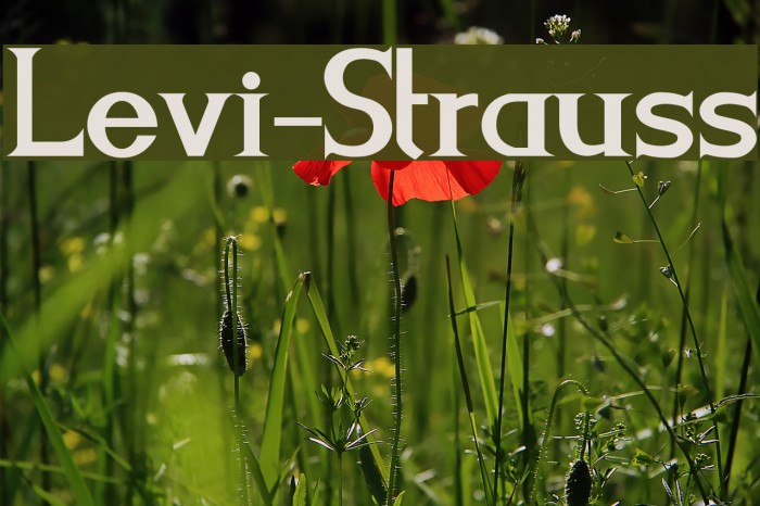 Levi-Strauss Font examples