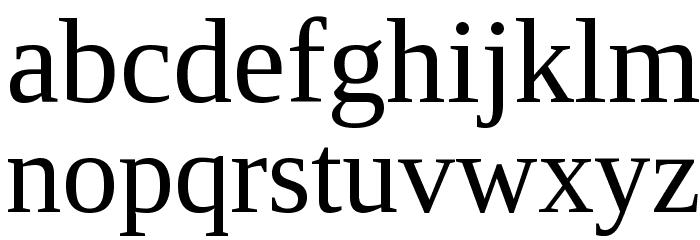 Liberation Serif Font LOWERCASE