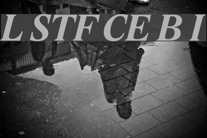Lido STF CE Bold Italic Fonte examples