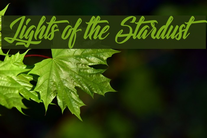 Lights of the Stardust Fonte examples