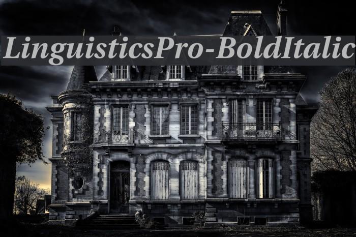 LinguisticsPro-BoldItalic Fuentes examples