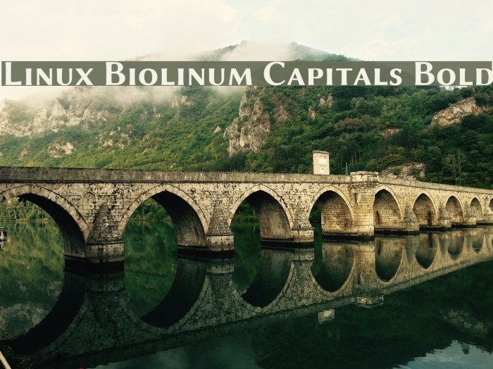 Linux Biolinum Capitals Bold フォント examples
