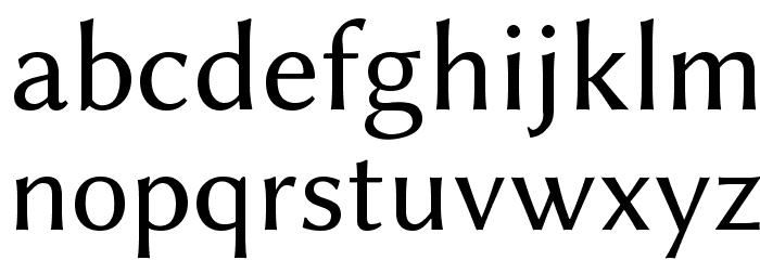 Linux Biolinum Font LOWERCASE