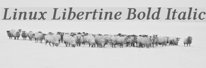 Linux Libertine Bold Italic Caratteri examples