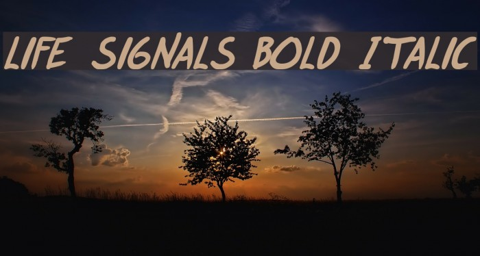 life signals Bold Italic 字体 examples
