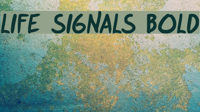 life signals Bold 字体 examples