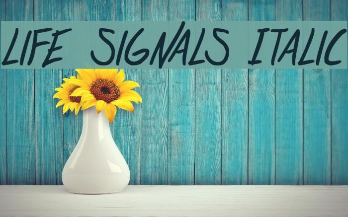 life signals Italic 字体 examples