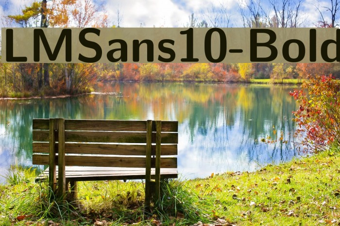 LMSans10-Bold Font examples