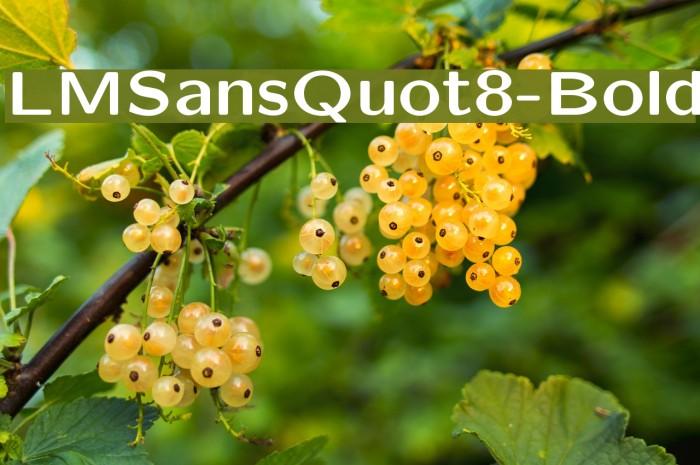 LMSansQuot8-Bold Font examples