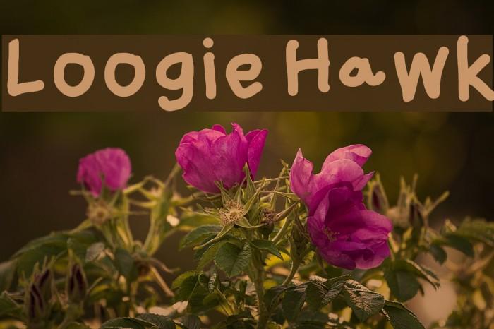 Loogie Hawk Font examples