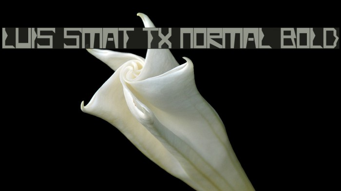 Luis Smat TX Normal Bold Fonte examples