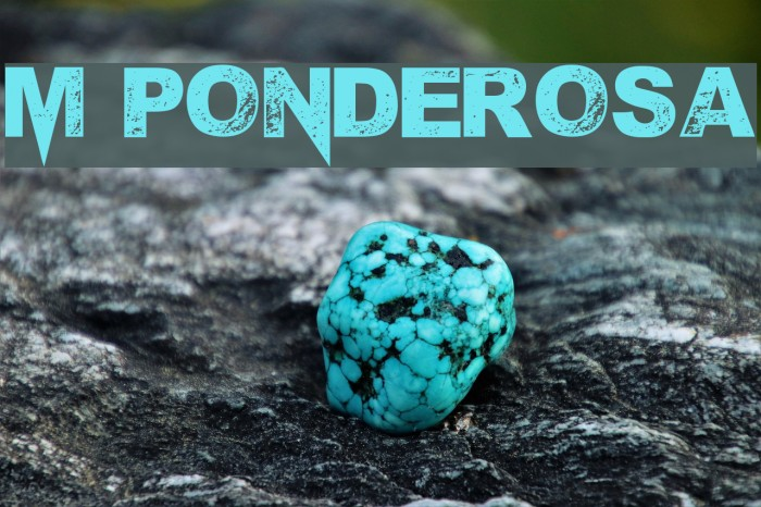 M Ponderosa Font examples