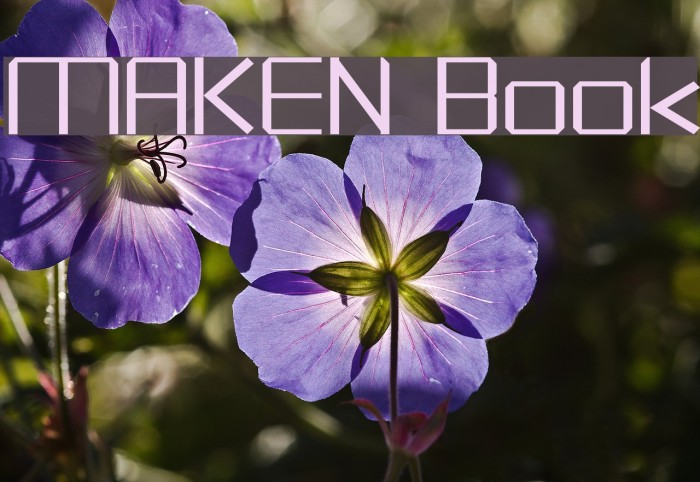 MAKEN Book フォント examples