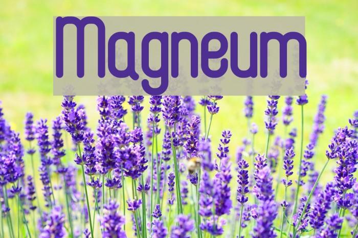 Magneum لخطوط تنزيل examples