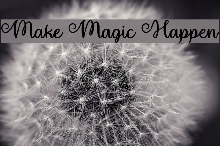 Make Magic Happen Шрифта examples