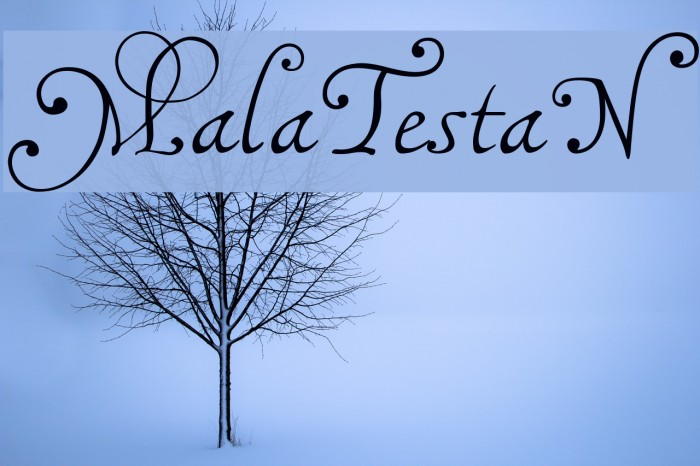 MalaTestaN Font examples